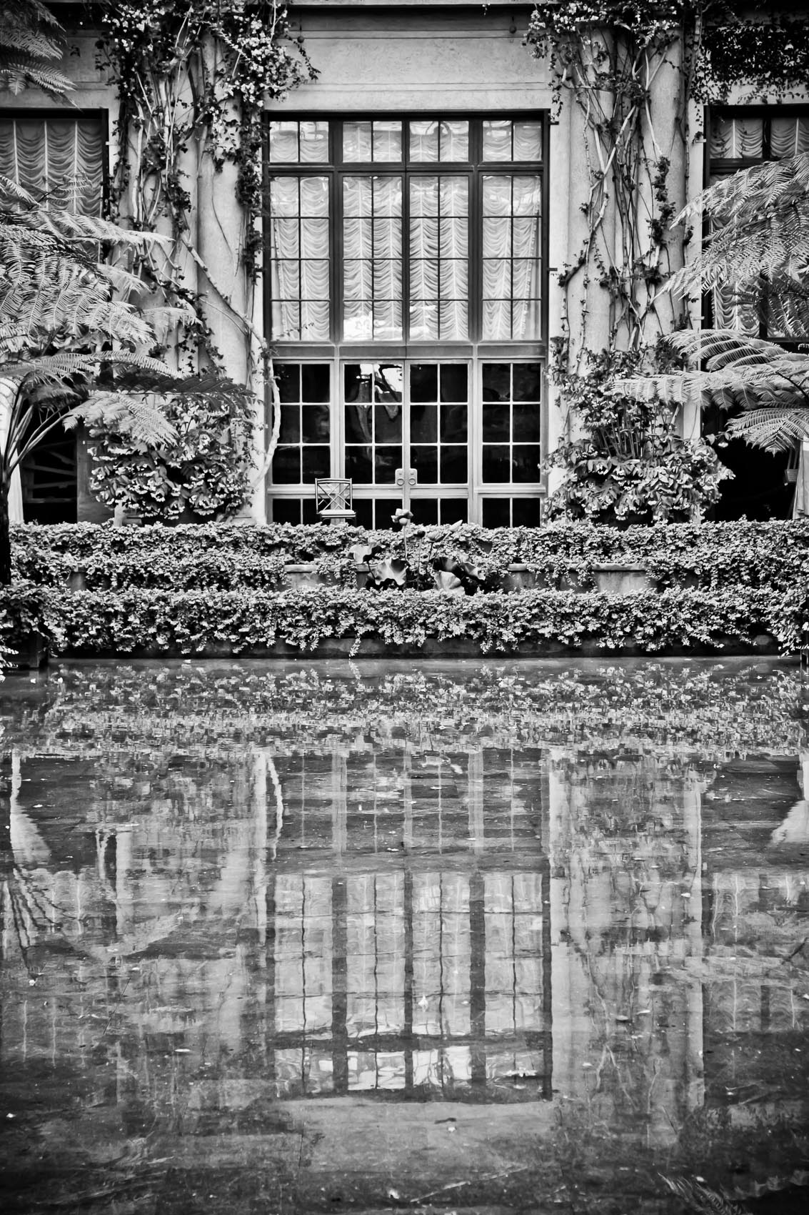 Architecture Feature in the Conservatory at Longwood Gardens in Kennet Square, PA | J. Eldon Zimmerman Photography | Lancaster, PA Commercial Photographer
